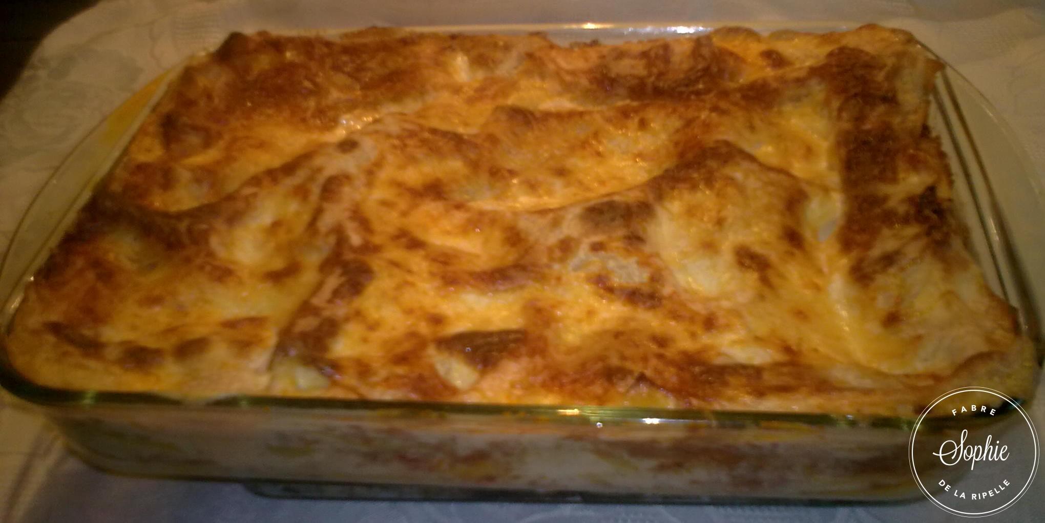 Lasagnes au four traditionnel italien la tendresse en - Decongeler au four traditionnel ...