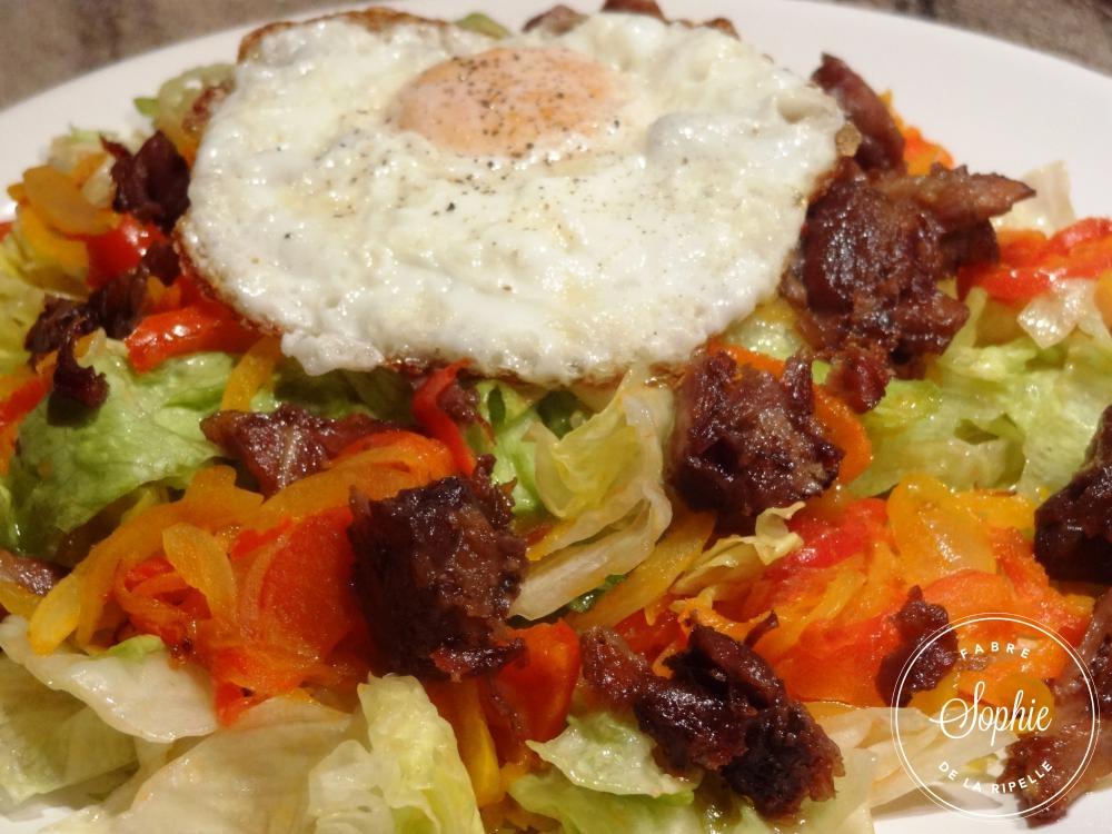 Salade gourmande aux manchons de canard la tendresse en - Cuisiner sans graisse ...