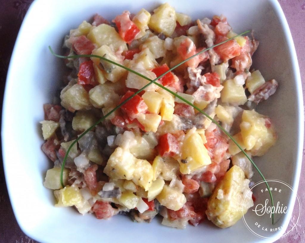 Salade de boeuf roumanie la tendresse en cuisine - Cuisiner sans graisse ...