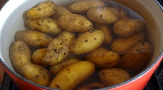 Gratin de courgettes et pommes de terre (sans gluten, sans caséine) 1