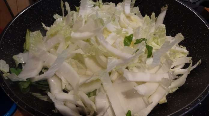 Chow mein aux légumes 9