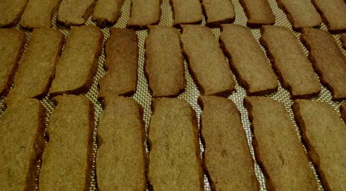speculoos-9