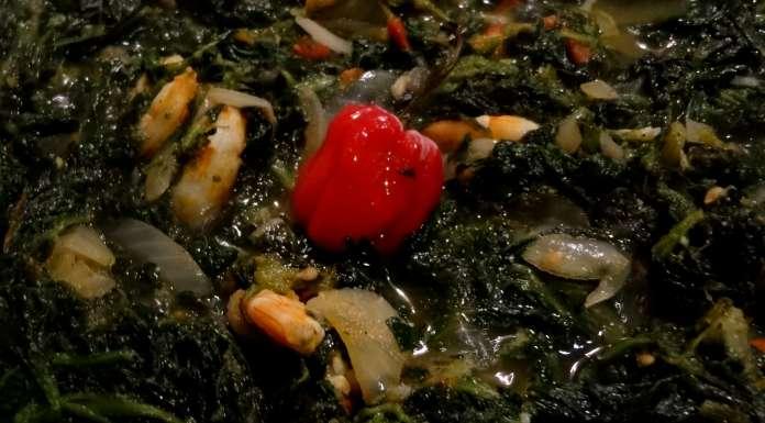 sauce-epinards-crevettes-et-poisson-fume-14